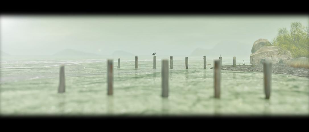 seagull_001