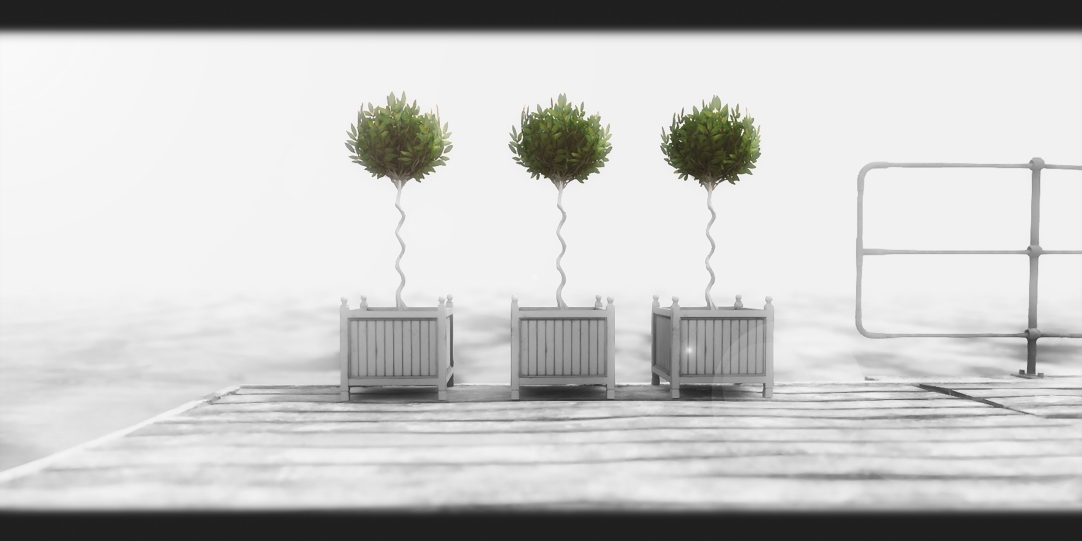 Trees B&W