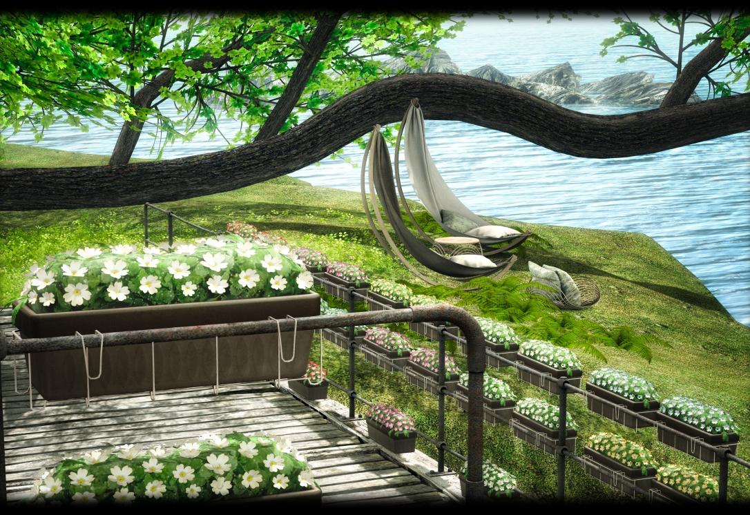ASTRALIA - Balcony Flowers