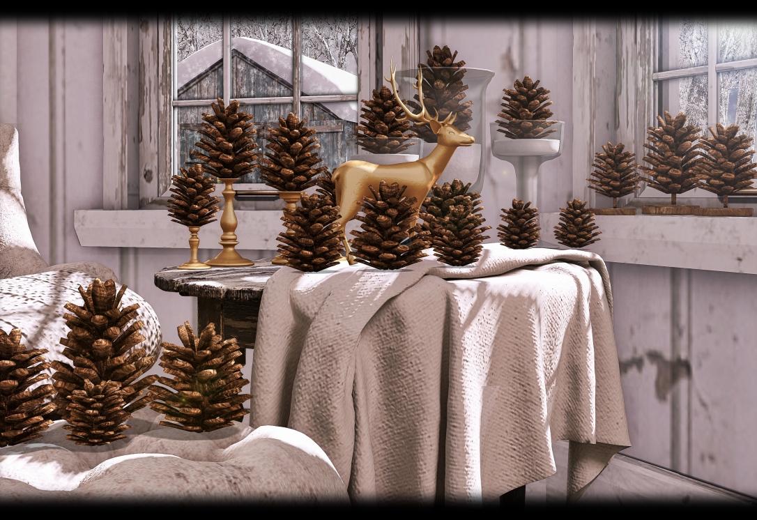 DISORDERLY - Golden Pines