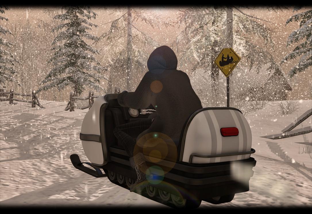 MADPEA - Snowmobile Rezzer