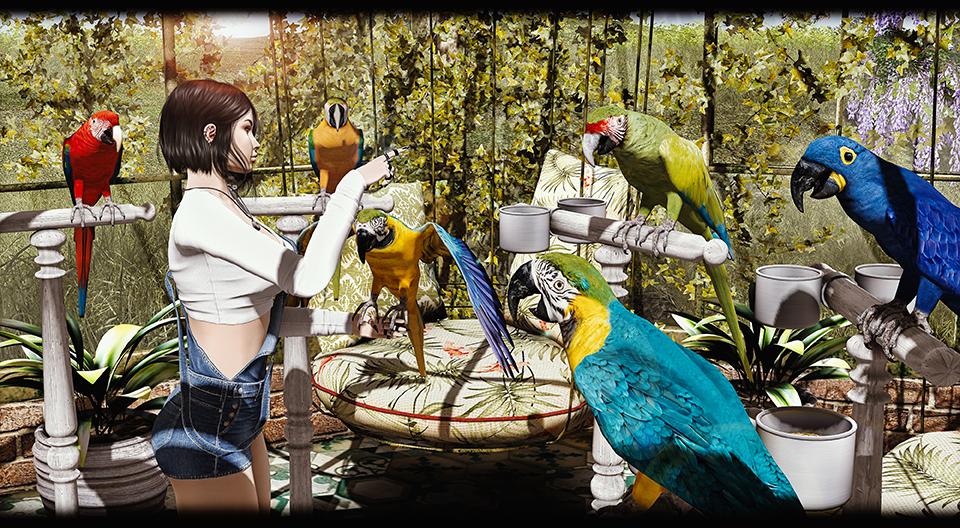 TLC- Parrots Collection