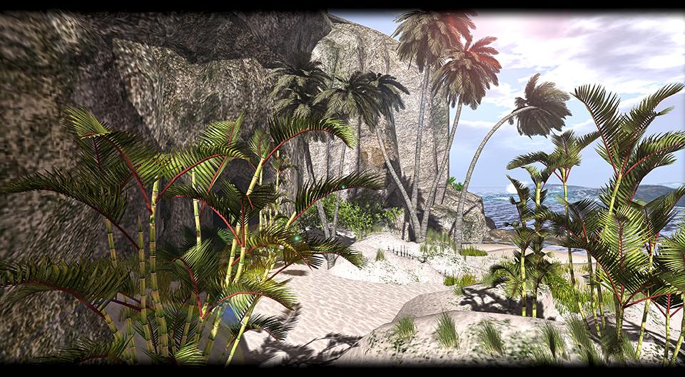 Little Branch - Royal Palm Tree