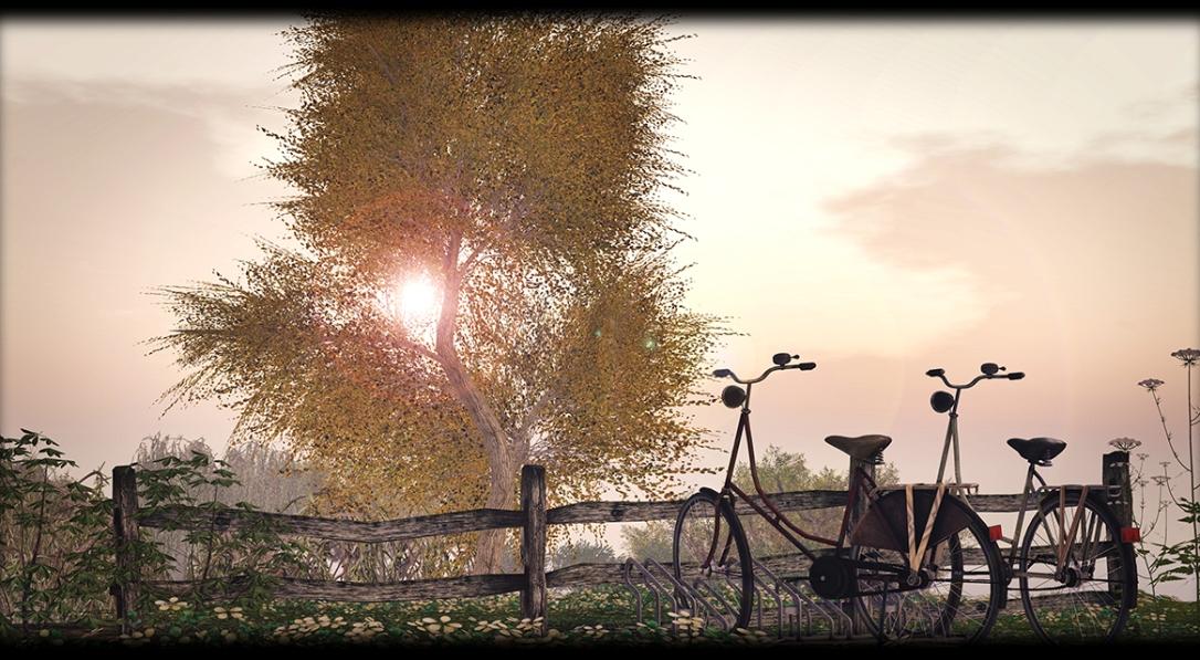 Little Branch - Walnut Tree V.2